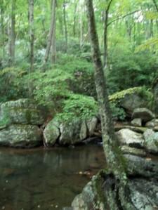 Cascades 005