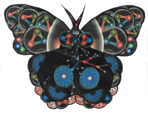 Sub-atomic Butterfly_web