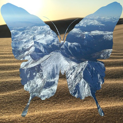 butterfly-mountains-desert