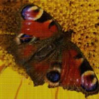 A thousand tiny butterflies
