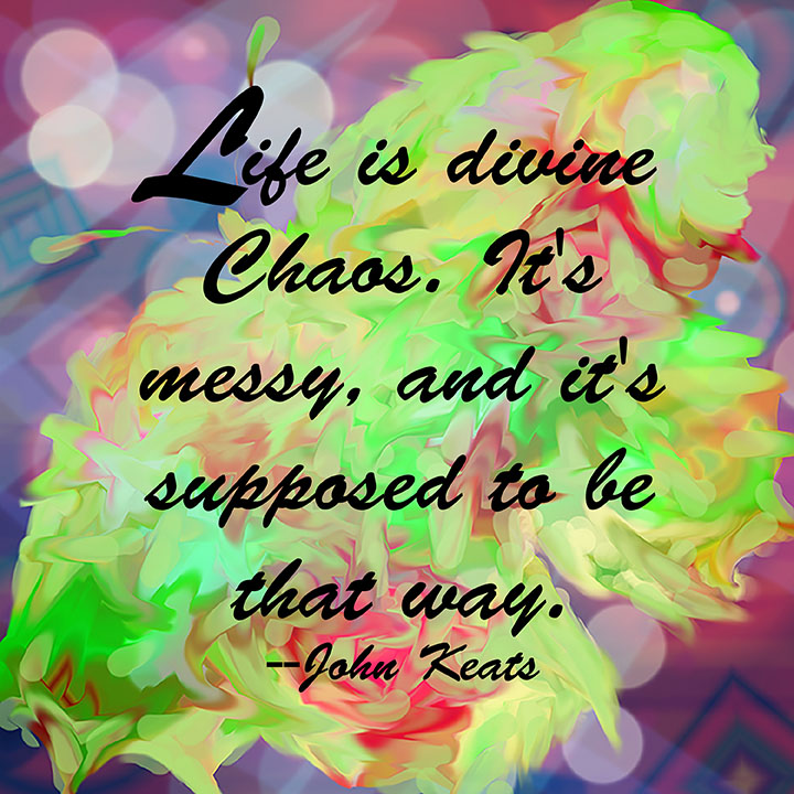 Quote Of The Day Life Is Divine Chaos Denise M Sessous Writer Cool Quote Of The Day Life