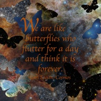 Quote of the Day - We are like butterflies...