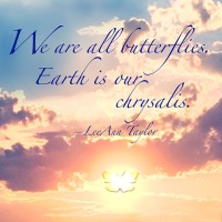 Quote of the Day - We are all butterflies...