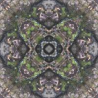 Kaleidoscope #11