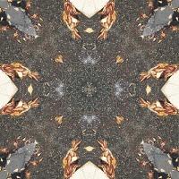 Kaleidoscope #22