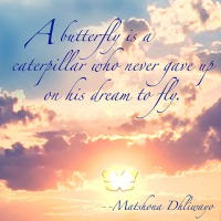 Quote of the Day - A butterfly is a...