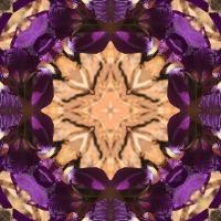Kaleidoscope #327