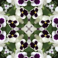 Kaleidoscope #360
