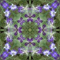 Kaleidoscope #394
