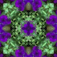 Kaleidoscope #395