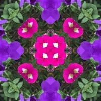 Kaleidoscope #396