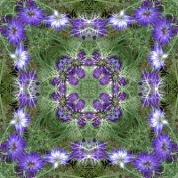 Kaleidoscope #397