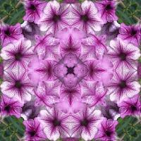 Kaleidoscope #398