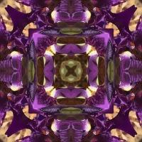 Kaleidoscope #406