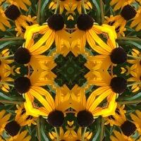Kaleidoscope #449