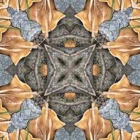 Kaleidoscope #455