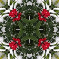 Kaleidoscope #476