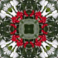 Kaleidoscope #479