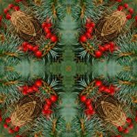 Kaleidoscope #480