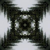 Kaleidoscope #515