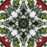 Kaleidoscope #516