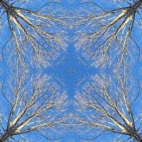 Kaleidoscope #518
