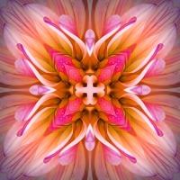 Kaleidoscope #548