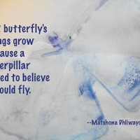 Quote of the Day - A butterfly's wings...