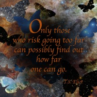 Quote of the Day - Only those who risk...