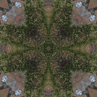 Kaleidoscope #606