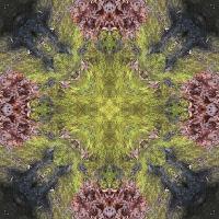 Kaleidoscope #607