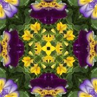 Kaleidoscope #638