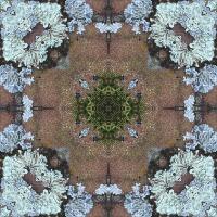 Kaleidoscope #641