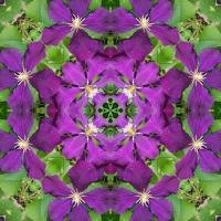 Kaleidoscope #664