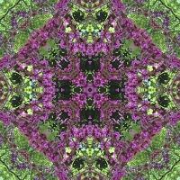 Kaleidoscope #672