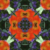 Kaleidoscope #673