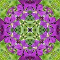 Kaleidoscope #674