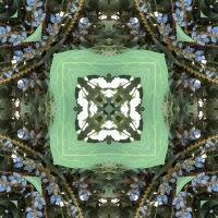 Kaleidoscope #675