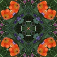 Kaleidoscope #676