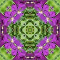 Kaleidoscope #688