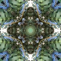 Kaleidoscope #694
