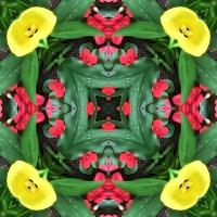 Kaleidoscope #698