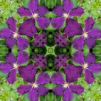 Kaleidoscope #699