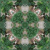 Kaleidoscope #712