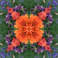 Kaleidoscope #713