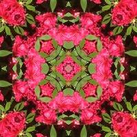 Kaleidoscope #726
