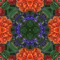 Kaleidoscope #727