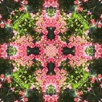 Kaleidoscope #728