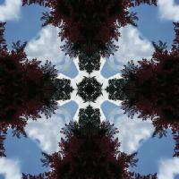 Kaleidoscope #730