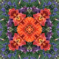 Kaleidoscope #734